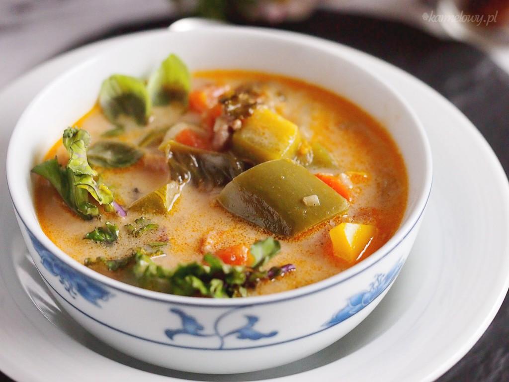 Zupa warzywna z mięsem mielonym / Meaty vegetable soup