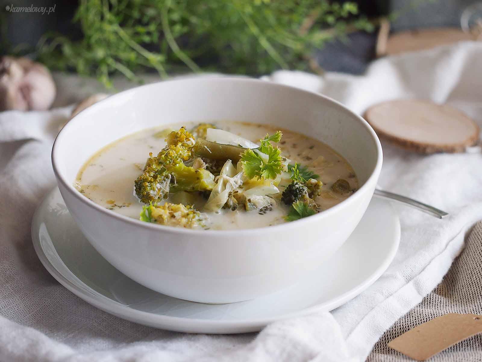 Zielona-zupa-warzywna-z-kurczakiem-Green-vegetable-soup-with-chicken