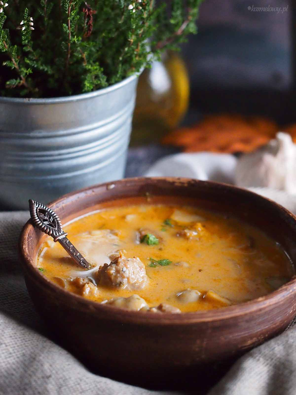 Wegierska-zupa-z-miesem-i-grzybami-Hungarian-mushroom-and-meat-soup