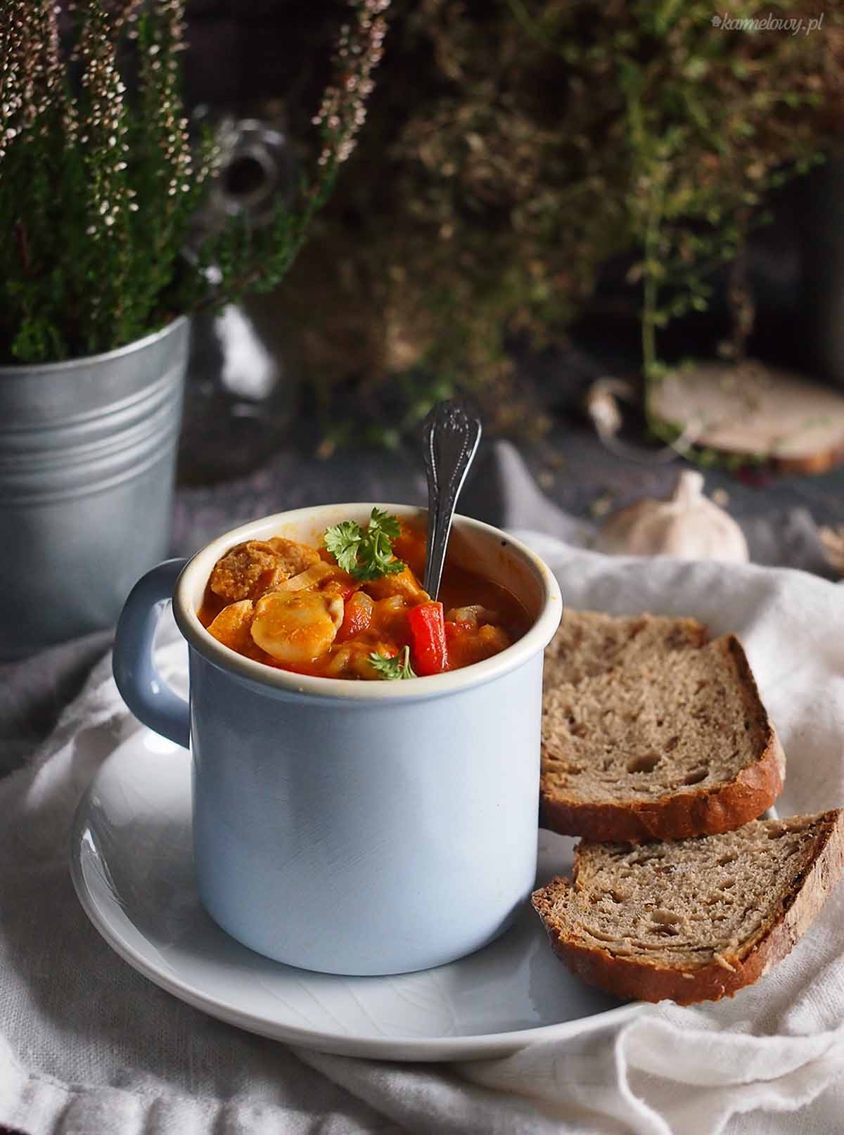 Gulasz-z-indykiem-dynia-i-papryka-Turkey-pumpkin-and-pepper-stew